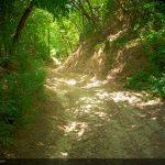 Il Sentiero della Castagna Granda