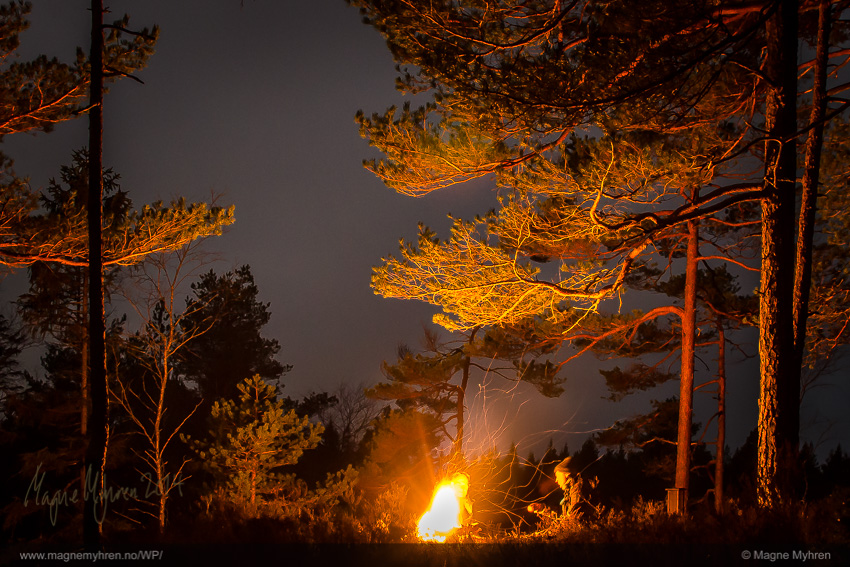 bonfire (1 of 1)-2