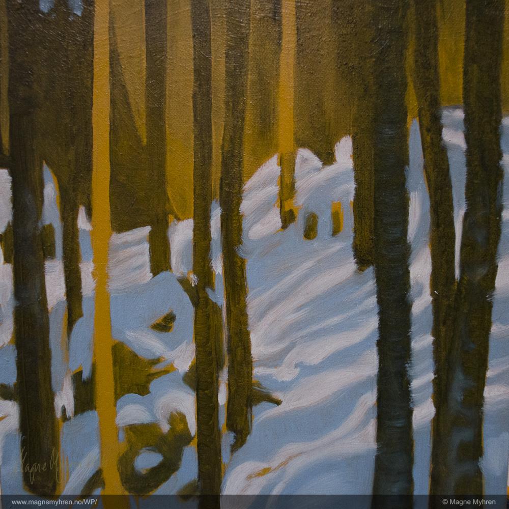30-12-2012_dsc0999-3