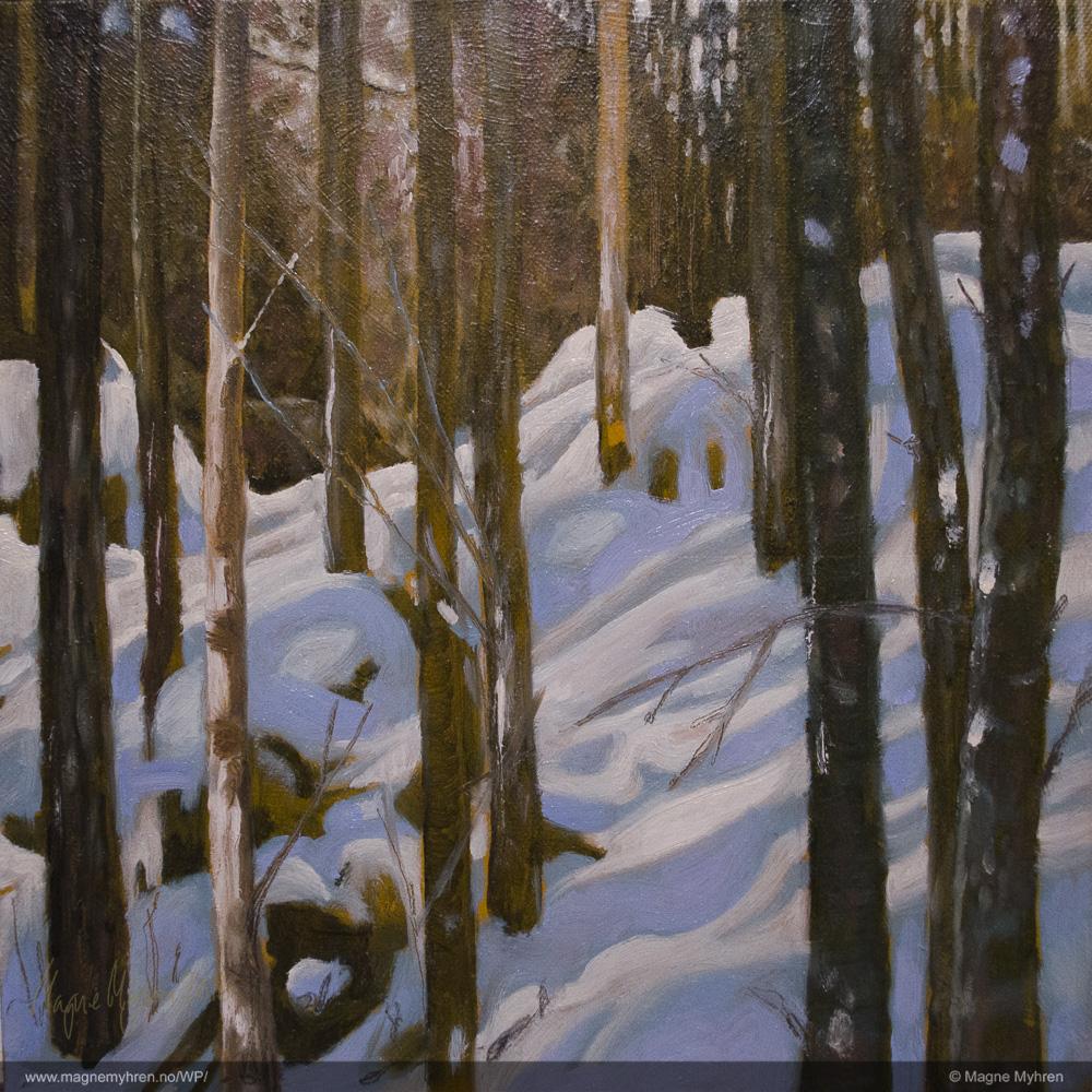 30-12-2012_dsc1002