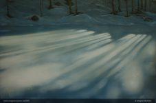 vinterskygger-1-2